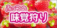 富津のイチゴ狩り